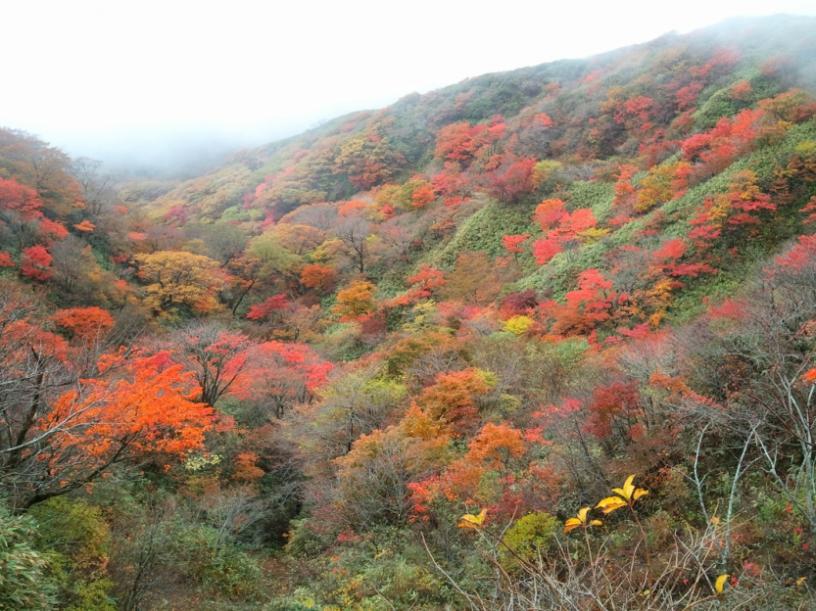 2011-10-23 12.45.32.jpg